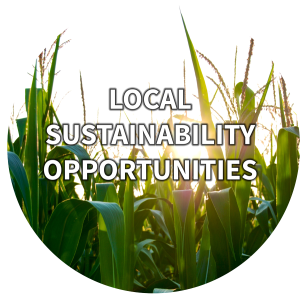 a circle of corn that links to Local Sustainability Opportunities